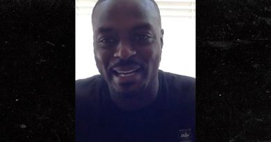 Plaxico Burress Spoke With Big Ben After Injury, 'He Will Be Back Next Year'